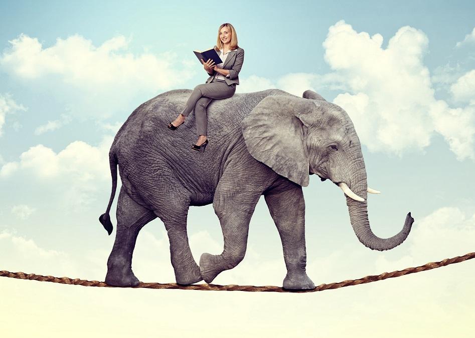 smiling woman on acrobat elephant